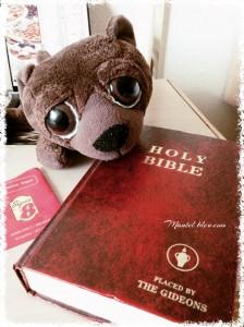 Así se quedó nuestro Ossy cuando se encontró con la Biblia en la mesilla del motel.