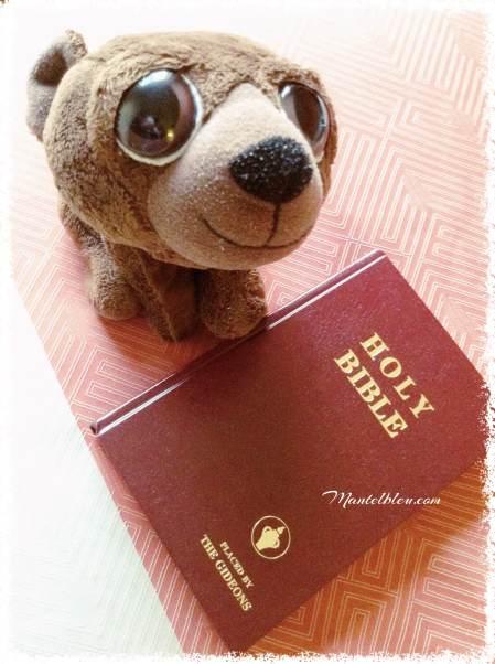 Ossy comprobando si es verdad que en todos los moteles, se encuentra en cada habitación la Biblia.  Comprobado.