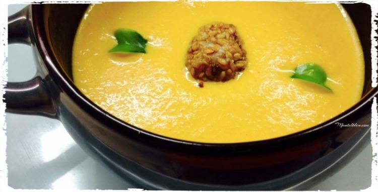 Crema-de-zanahoria-con-queso-gorgonzola_Fotor-980x500_Fotor